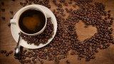 Thanh tra các cơ sở chế biến cà phê