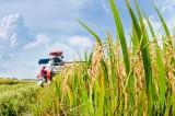 Các cơ chế, chính sách góp phần thúc đẩy phát triển nông nghiệp
