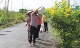 Tuyến đường xanh - sạch của phụ nữ Châu Thành