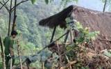 Vụ cô giáo nghi bị hiếp, giết trong rừng: Hé lộ danh tính nghi can