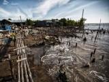Cà Mau mất 450ha đất ven biển mỗi năm do biến đổi khí hậu