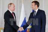 Ưu tiên hàng đầu của lãnh đạo Nga-Pháp là chống khủng bố