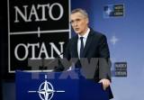 Hội nghị Bộ trưởng Quốc phòng NATO tập trung vào chống khủng bố