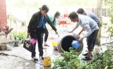 Đức Hòa, Tân Thạnh: Bệnh sốt xuất huyết có nguy cơ gia tăng