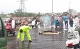Chỉ trong tháng 8, có 4 người chết trên cầu Tân An 1