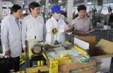 Công ty TNHH An Nông thực hiện tốt chính sách, pháp luật về sản xuất, kinh doanh