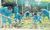 Đảng ủy Quân sự tỉnh Long An thực hiện tốt công tác hậu cần, tài chính