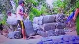 Long An: Xử lý trên 230 vụ  buôn lậu trong tháng 8