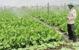 Đầu tư vào nông nghiệp ứng dụng công nghệ cao - cần tiếp tục hỗ trợ doanh nghiệp