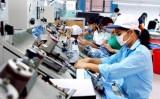 Doanh nghiệp chế biến chế tạo lạc quan về triển vọng kinh doanh quý IV