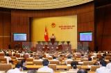 Kỳ họp thứ 4, Quốc hội khóa XIV: Thông qua dự án Luật Lâm nghiệp