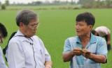 Phân bón Đầu Trâu chiếm 30% sản lượng tiêu thụ của thị trường phân bón miền Nam