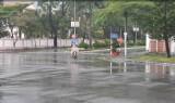Côn Đảo bắt đầu nổi gió mạnh, giữ nguyên phương án chống bão