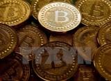 """Các đồng tiền ảo """"rơi tự do"""", đánh dấu tuần giao dịch ảm đạm nhất"""