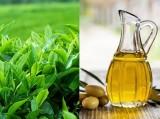 Cách dùng trà xanh cho các loại da khác nhau