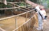 Thực hiện Tháng Vệ sinh, tiêu độc, khử trùng trễ - Người chăn nuôi lo lắng