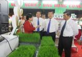 Cơ hội mở rộng thị trường lúa gạo, nông sản chất lượng