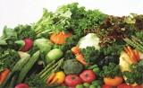 Xuất khẩu rau quả đang chững lại
