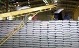 Xuất khẩu gạo đối mặt nhiều khó khăn những tháng cuối năm