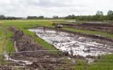 Tân Hưng: Xử phạt hàng chục hộ dân tùy tiện chuyển đất trồng lúa sang nuôi thủy sản