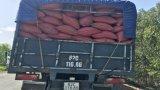 Né trạm thu phí BOT 830, nhiều xe quá tải đổ vào Đường tỉnh 818