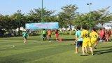 Công ty Điện lực Long An tổ chức Hội thao mừng Quốc khánh