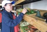Đưa thực phẩm sạch đến người tiêu dùng