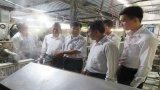 Kinh phí khuyến công hỗ trợ ứng dụng máy sản xuất bún tươi tự động