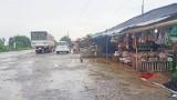 Chấn chỉnh tình trạng bày bán động vật hoang dã tại chợ nông sản Thạnh Hóa