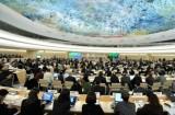 LHQ thảo luận vai trò của nghị viện với việc thúc đẩy quyền con người