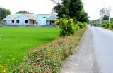 Cần Đước: Khởi sắc từ chương trình xây dựng nông thôn mới