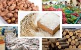 Xuất khẩu nông sản Việt Nam năm 2018 vượt kỷ lục 40 tỉ USD