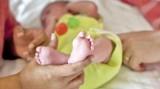 Công an Việt Nam phá băng nhóm môi giới mang thai hộ xuyên quốc gia
