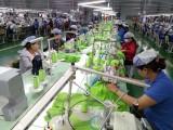 Chuyên gia Italy: EVFTA mở đầu kỷ nguyên mới của hợp tác Việt Nam-EU