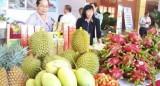 Trái cây ĐBSCL xuất khẩu vào được nhiều thị trường khó tính