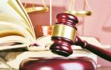 Bỏ lọt hành vi phạm tội nhiều lần, tòa hủy án sơ thẩm