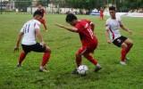 Phong trào thể dục - thể thao ngày càng phát triển