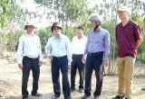 Nguyên Chủ tịch nước -Trương Tấn Sang khảo sát xây cầu nông thôn tại Đức Huệ