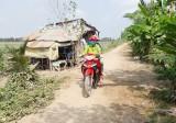 Tân Hưng: Sớm tiếp tục thi công tuyến lộ ven kênh Bảy Thước