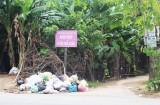 Rác tràn lan trên Đường tỉnh 835