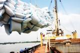 Xuất khẩu gạo của Việt Nam phải tính chuyện đường dài