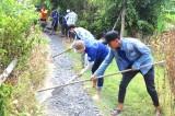 Chiến dịch Tình nguyện Mùa Hè Xanh năm 2019: Nhiều công trình, phần việc thanh niên ý nghĩa