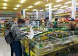 Bách hóa Xanh: Thu hút khách vì tiện lợi, dễ mua sắm
