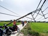 Thủ Thừa: Dông, lốc xoáy làm 9 người bị thương, tài sản thiệt hại 6,5 tỉ đồng
