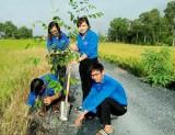 Đoàn Thanh niên huyện Cần Đước với nhiều hoạt động bảo vệ môi trường