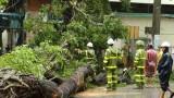 Công điện của Thủ tướng về ứng phó, khắc phục hậu quả mưa lũ bão số 3