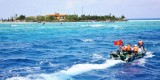 Bài 3: Sức sống trên đảo Sinh Tồn Đông