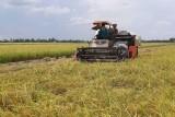 Vĩnh Hưng: Huy động các nguồn lực đầu tư xây dựng nông thôn mới