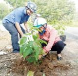 Thuận Thành: Diện mạo nông thôn đổi mới từng ngày