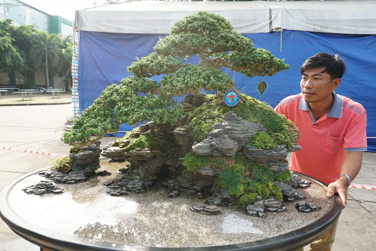 The work of miniature landscape art wins a special prize